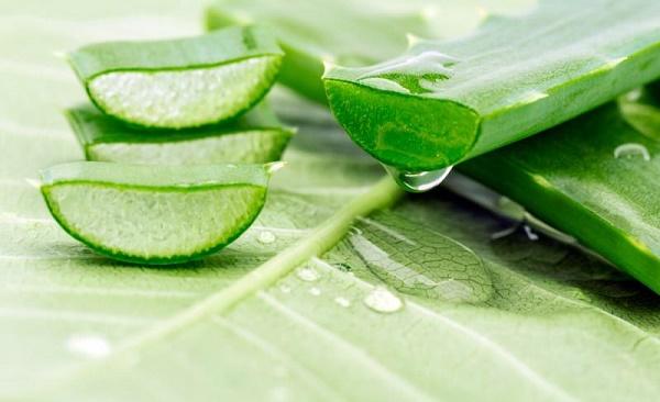 5 cách dưỡng ẩm bằng nguyên liệu tự nhiên cho da