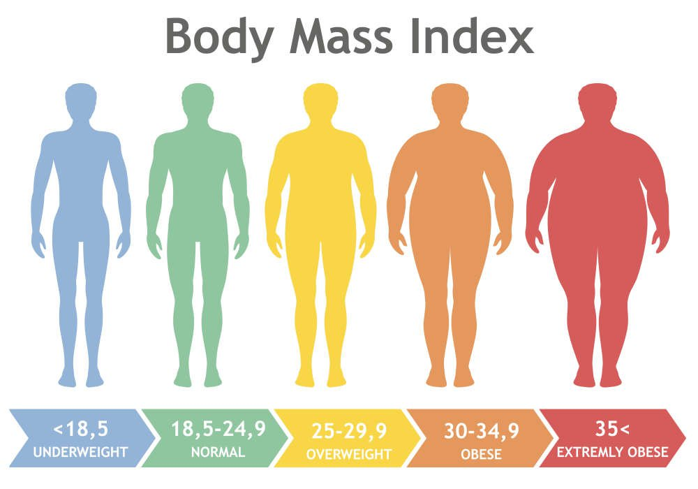 Do người béo phì thường có nồng độ đường huyết cao và huyết áp không ổn định gây ra thận yếu