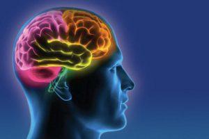 Như thế nào là thiếu máu não, rối loạn tiền đình